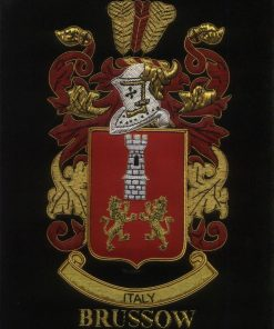 Brussow Family Crest /  Brussow Coat of arms